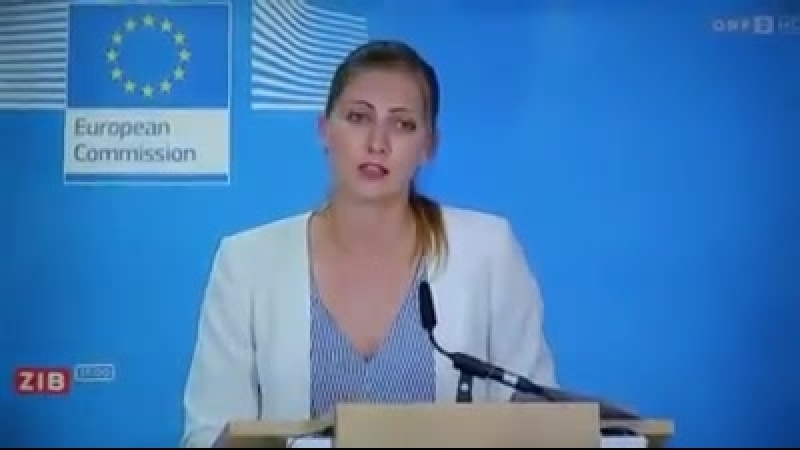 EU Schlepper und die Steuerzahler müssen das bezahlen