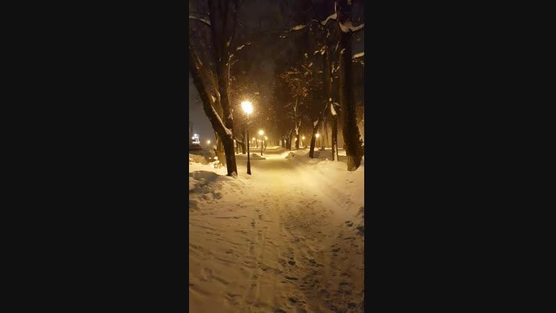 Метель в Сергиевом Посаде..mp4