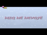 Winx Club - Sezoni 1 Episodi 7 - Miq në nevojë - [EPISODI I PLOTË]