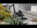 ALMA Articulated Locomotion and Manipulation for a Torque Controllable Robot