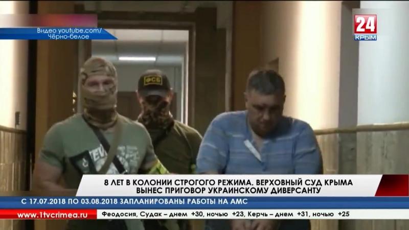 8 лет в колонии строгого режима. Верховный суд Крыма вынес приговор украинскому диверсанту