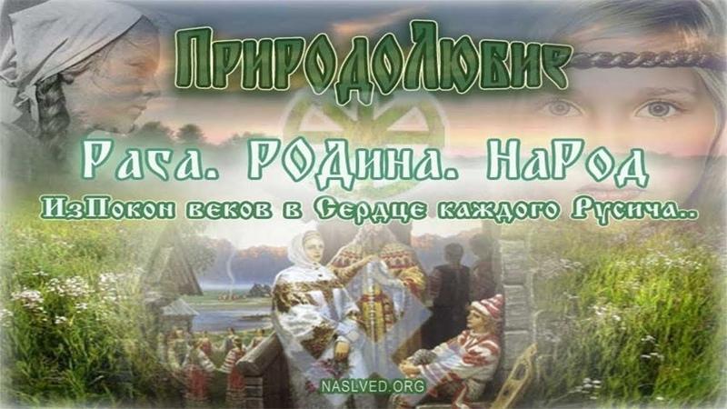 Почему славяне не молились Богам