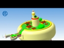 Проектная деятельность на кафедре Компас 3D