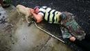 🔴Люди думали что на дороге лежит пьяница и проходили мимо Только пёс пытался спасти хозяина…