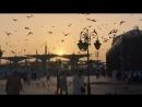 Makkah_madinah1_video_1531297896255.mp4