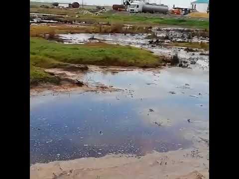Загрязнение природы в Темрюкском районе, Краснодарского края