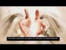 Какое отношение имеют к нам благословения обещанные в Писании