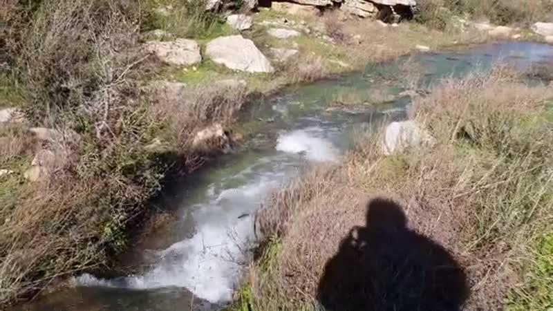 Сирийская весна в области Дейр Шамиль в провинции Хама