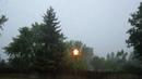 Wonderful Rain