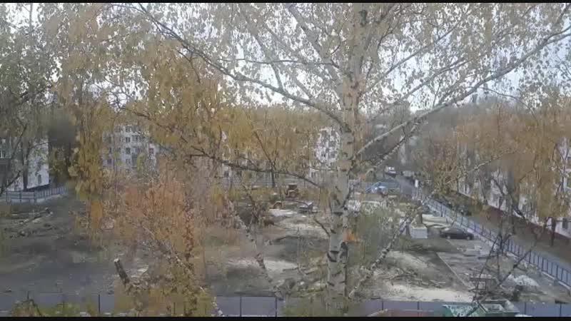 спиливают деревья,
