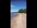 29 мая 2018 прогулка по берегу Финского залива