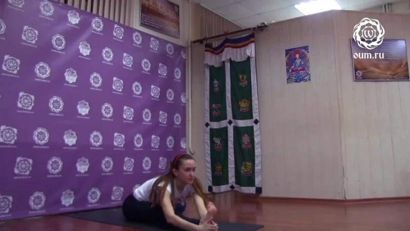 8.Йога для начинающих. Видео уроки. Практика Хатха-йоги - Комплекс 8 - Д.Шленников