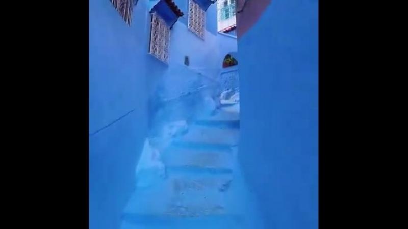 Chefchaouen, Maroc La Perle Bleue du Maroc 🇲🇦
