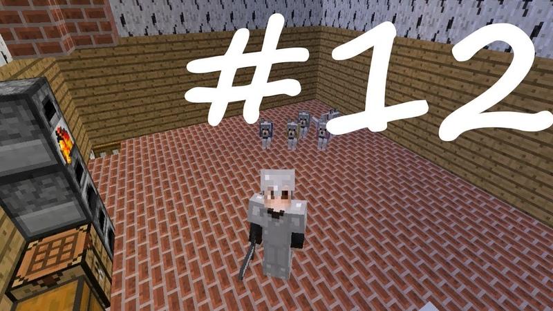 Minecraft: Выживание 12 - Новый пёсик, портал в Ад и зачаровальня