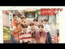 BRIDGE TV DANCE - 03.08.2018
