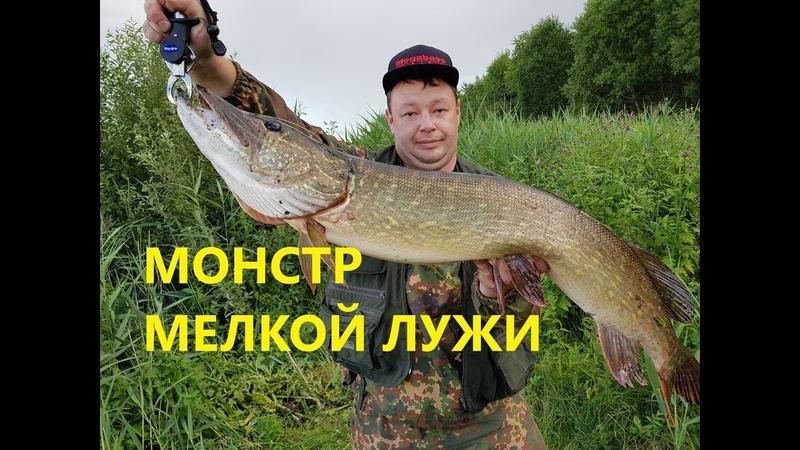 Бой с Трофейной Щукой Воблер который приносит Щук 7 кг