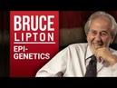 BRUCE LIPTON - BIOLOGY OF BELIEF - Part 1/2 | London Real