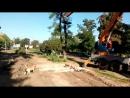 Уничтожение деревьев на алле