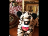 Тигр для Тиграна❤️🎁