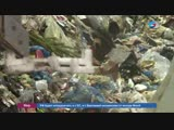 Сенаторы будут мониторить тарифы на вывоз мусора в регионах