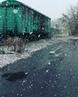 Rus kite video