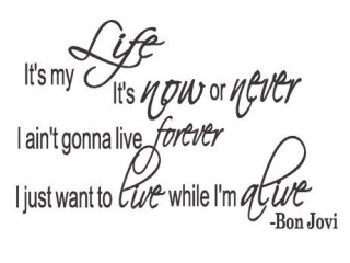 Bon Jovi - It's My Life #Bon_Jovi #Life #BonJovi #MyLife #My_Life #SV_Rock