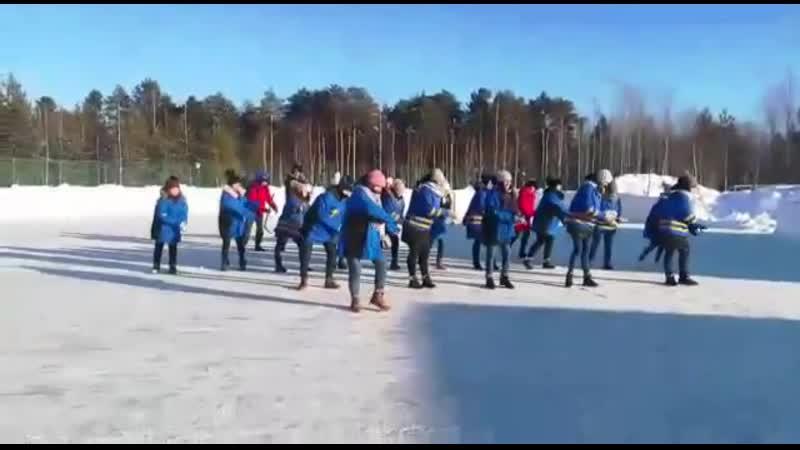 Флешмоб в поддержку проекта хоккейный корт