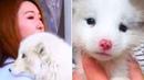 Frau dachte einen Welpen zu adoptieren, dann dämmerte es ihr – Es war gar kein Hund!