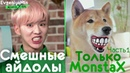 KPOP | СМЕШНЫЕ MONSTA X 1 | TRY NOT TO LAUGH CHALLENGE | funny moments