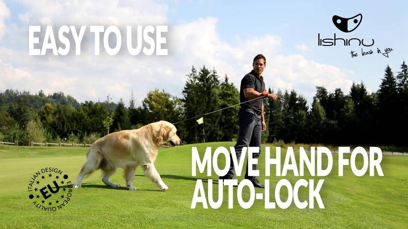 How To Use Lishinu World`s 1st Retractable Hands Free Dog Leash