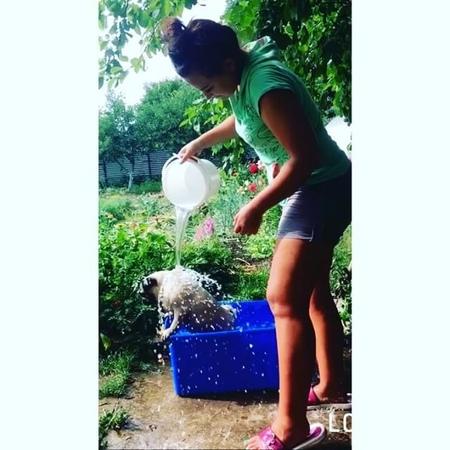 Gribanova_anastasiya video