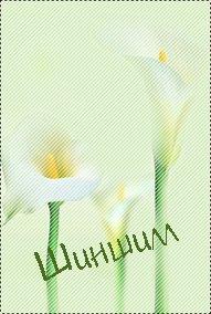 Елена Оо
