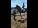 парад лошадок