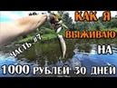 ВЫЖИВАЮ МЕСЯЦ 30 ДНЕЙ НА 1000 РУБЛЕЙ В РОССИИ ДЕНЬ 23 26 НАШЛИ ТАНК НА ПОИСКОВЫЙ МАГНИТ