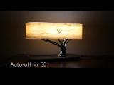 Настольная лампа HomeTree Light Of the Tree (YT-M1602-B2)