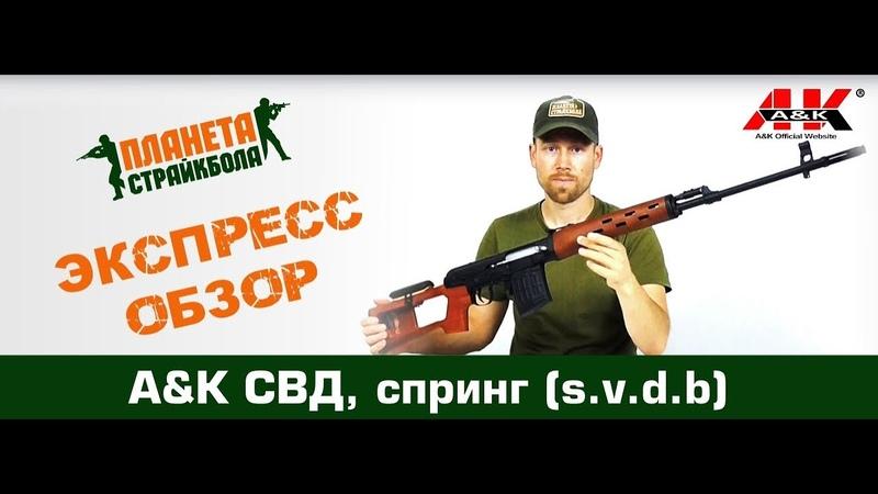 AK Винтовка СВД, спринг, под дерево (s.v.d.b)