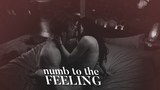 ♥ Takeshi & Kristin | Numb to the Feeling [For Ann]