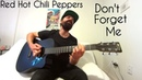Don't Forget Me Red Hot Chili Peppers Acoustic Cover by Joel Goguen