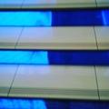 magnum_denzovich video