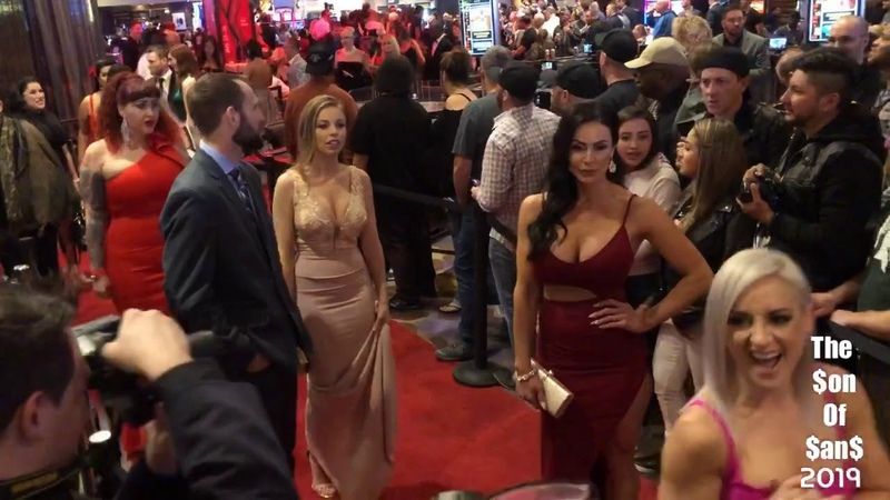 2019 Avn awards red carpet highlights
