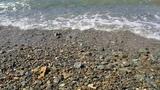 Находка, пляж, сказка, кэшбери, хотите стать богатыми, смотрите мои видео, Алекс Рантье