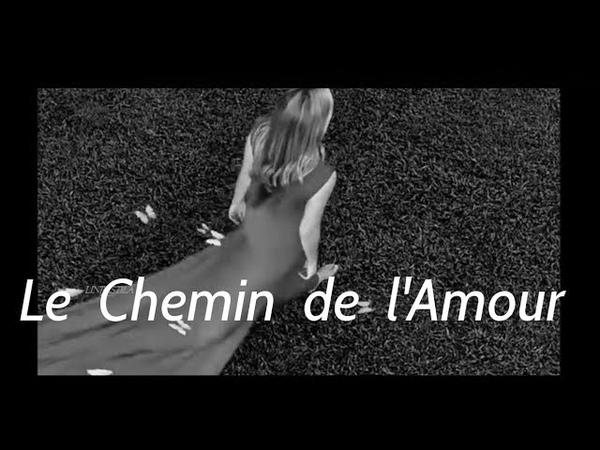 Le Chemin de l'Amour Michel Pépé