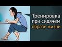 Гимнастика для офисных работников видео упражнений при боли в спине
