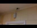 В туалете алтайского кафе ведут видеонаблюдение за посетителями