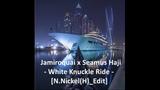 Jamiroquai x Seamus Haji - White Knuckle Ride N.Nickel(H)_Edit