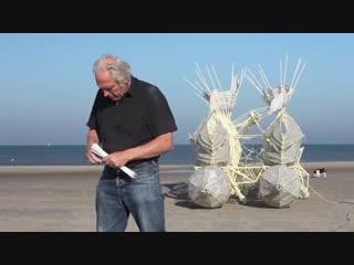 Движимые ветром пляжные скульптуры Тео Янсена (6 sec)