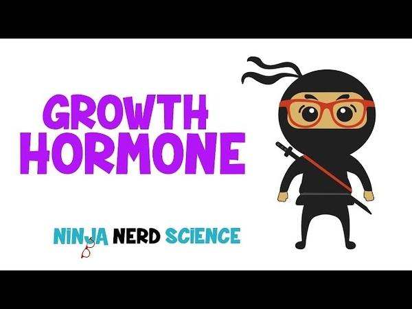 Endocrinology   Growth Hormone