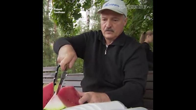 Лукашэнка зьбірае кавуны