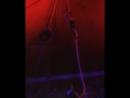 Талдықорғанда циркте өнер көрсетіп жатқан акробат құлап кетті