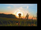 CHARLIE HADEN &amp PAT METHENY - 'THE PRECIOUS JEWEL'